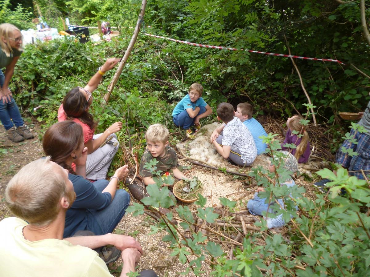 Team work - giant bird's nest